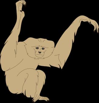 monkey-45732_960_720.png