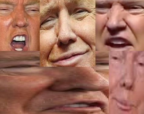 2F548E9700000578-3357973-Donald_Trump_screaming_into_a_microphone-a-4_1449989247223.jpg