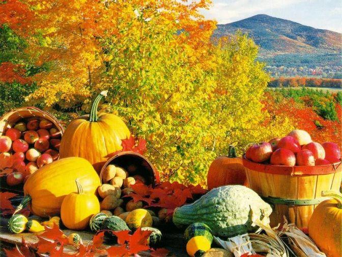 Seven Rustic Autumn Recipes